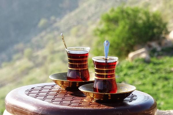世界のお茶