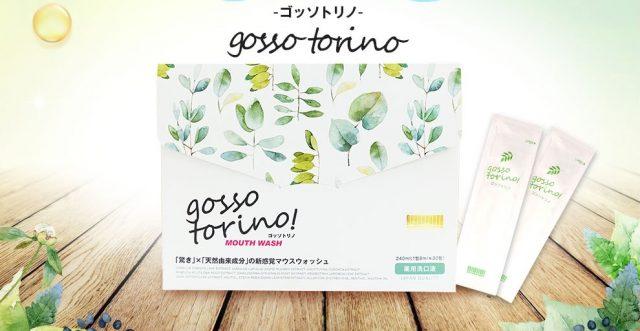 ゴッソトリノ2